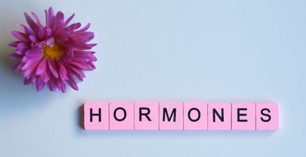 Pink wooden blocks spelling Hormones with pink flower